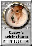 Review Casey's Celtic Charm's Casey's Celtic Charm Silver Award criteria